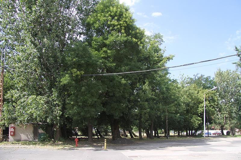 Ipari Park
